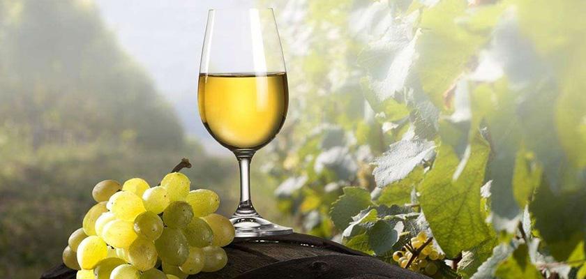 В кипрских винах нашли пестициды | CypLIVE