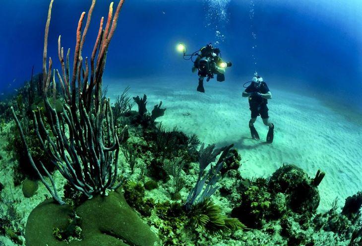 Двум подводным охотникам грозит штраф до 8500 евро