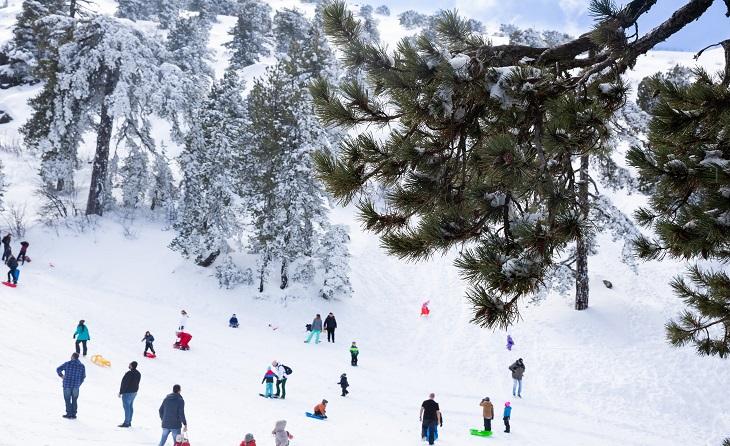 В Троодосе пройдет фестиваль снега - Вестник Кипра