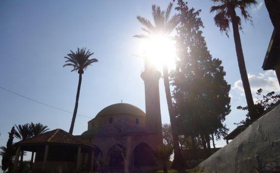 Шведские археологи нашли на Кипре древний город