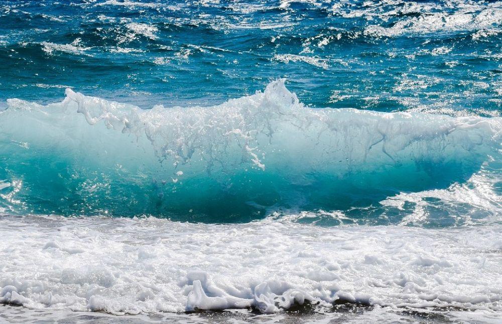 Энергия из волн и топливо из водорослей - Вестник Кипра
