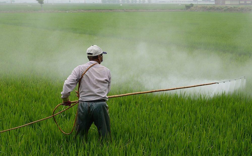 Штрафы за пестициды вырастут в два раза - Вестник Кипра