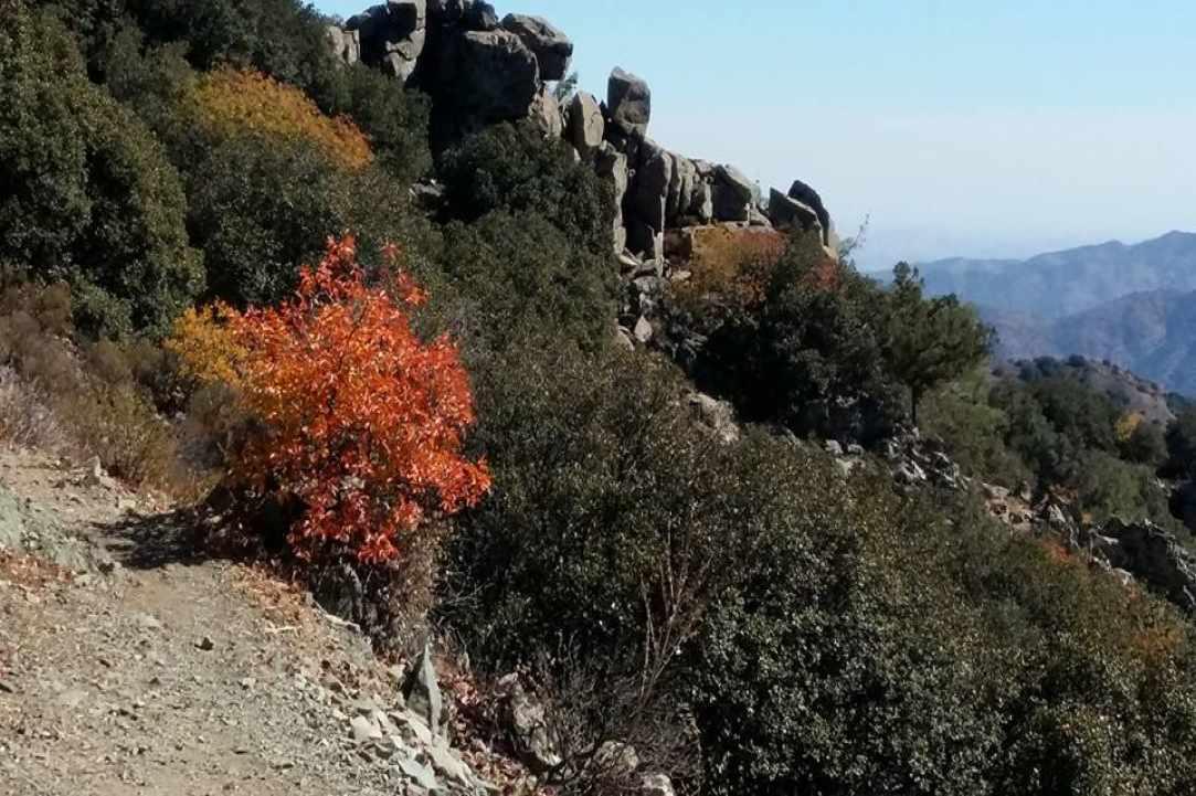 Осенние маршруты по Кипру - Вестник Кипра