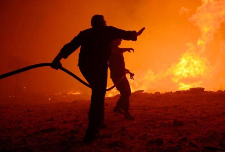 Поджигателей на Кипре будут сажать на 20 лет