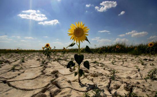 Третий год засухи - Вестник Кипра