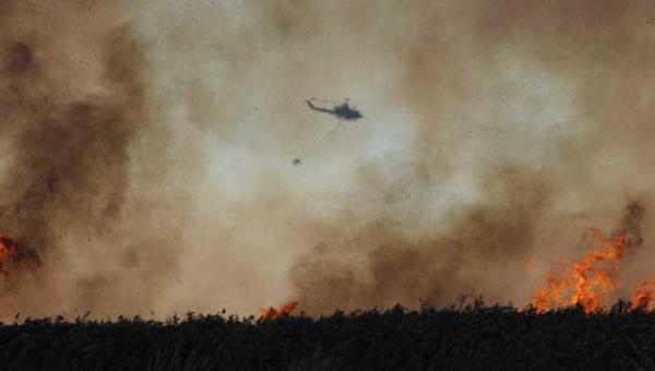 Правительство Кипра объявило неделю «Пожарной безопасности»