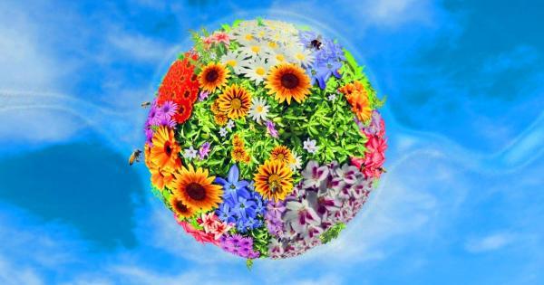 Детская разноцветная Планета-Кипр! Куда пойти на Кипре на этих выходных