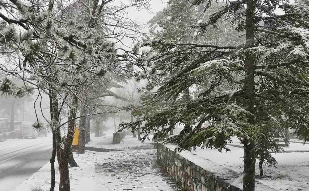 Вестник Кипра - Первый снег на Кипре (фото)