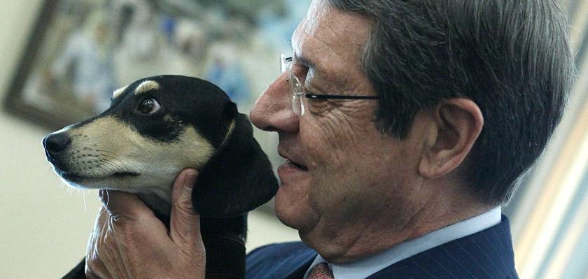 Президент Кипра взял собаку из приюта | CypLIVE