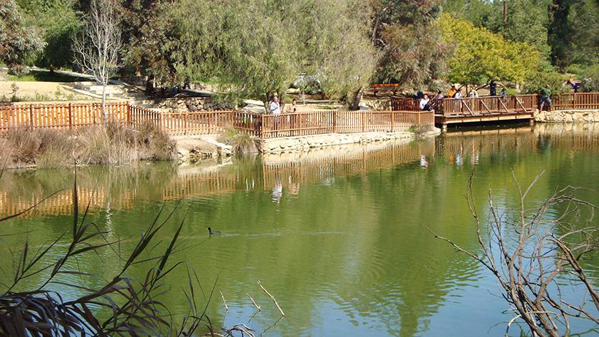 Состояние воды в парке Аталасса вызывает опасения | CypLIVE