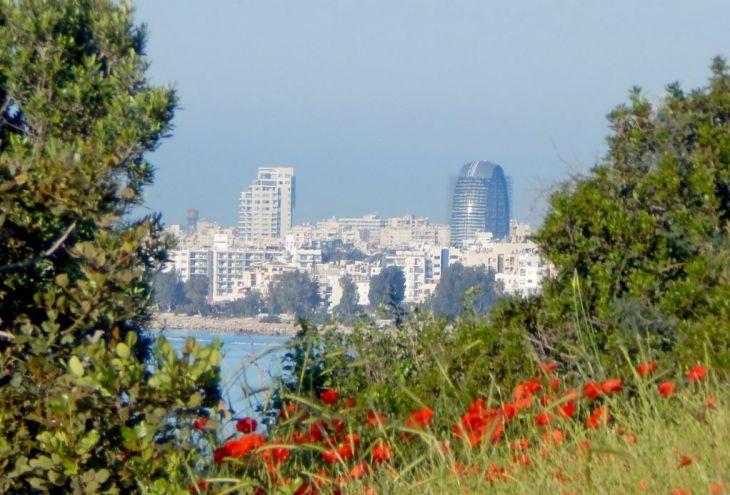 В 2017 году продажи недвижимости на Кипре выросли на 24%