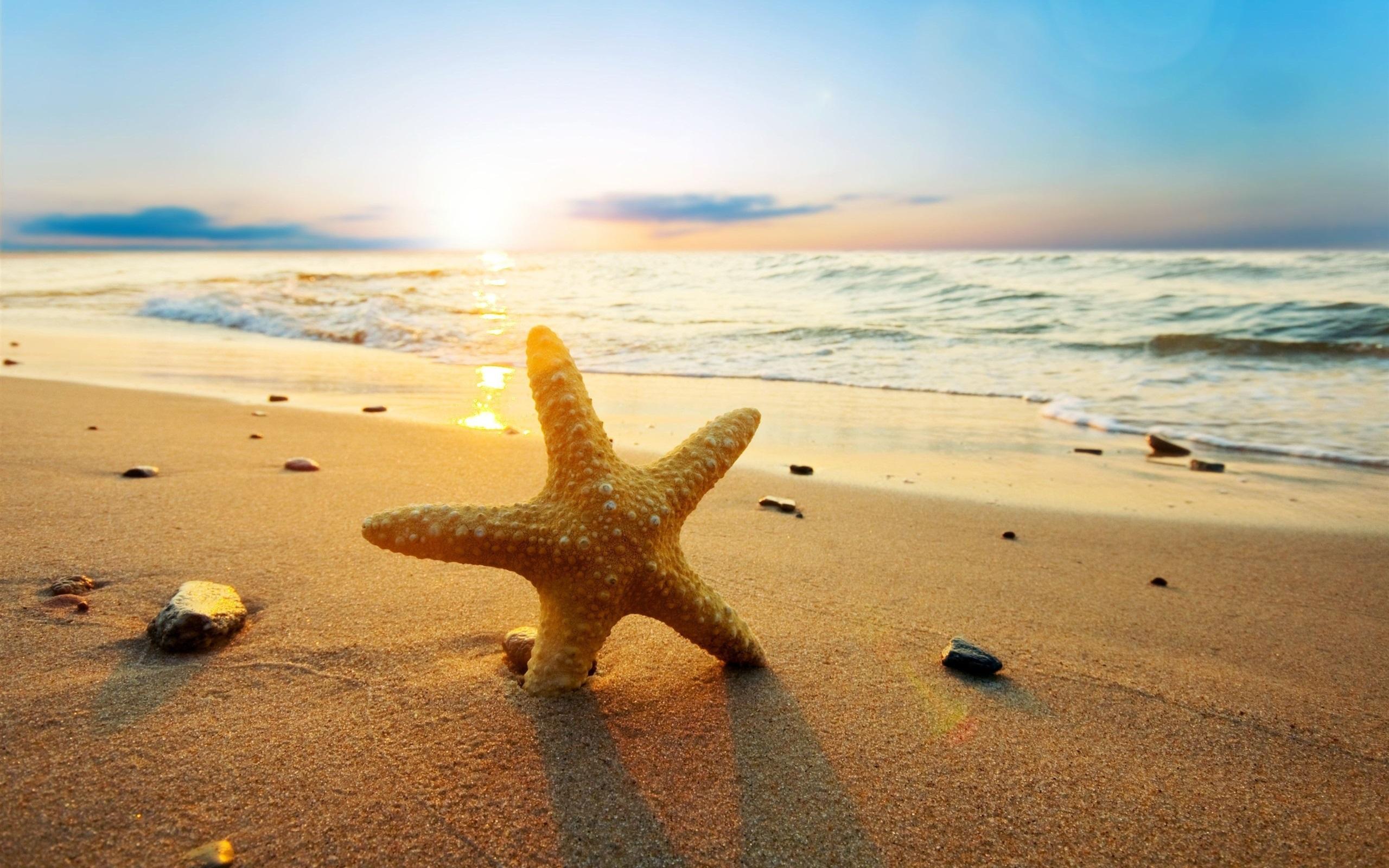 Солнечные дни на Кипре