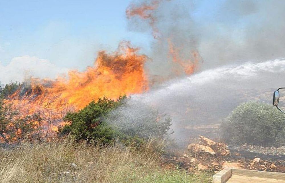 Причина пожара вКамбье - человеческий фактор - Вестник Кипра