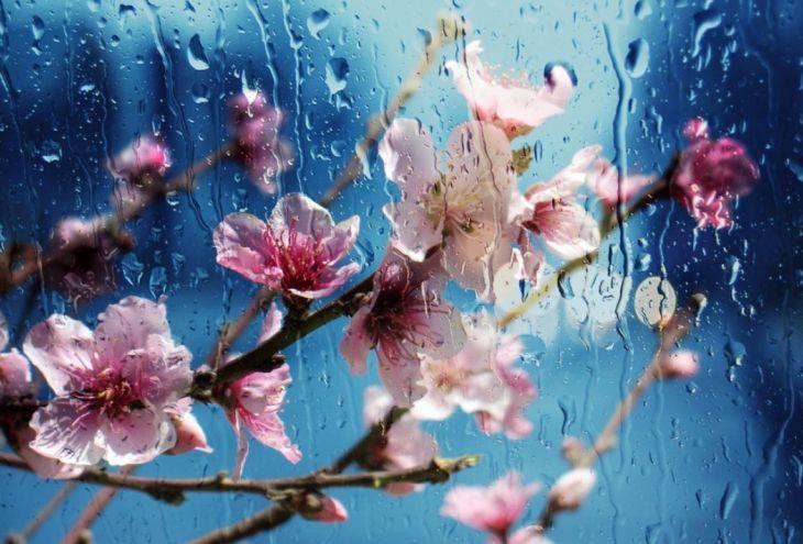 2 марта на Кипре: ливни с грозами + снегопады