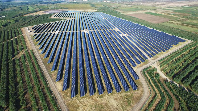 Экологи Кипра продолжают борьбу с идеей солнечного парка | CypLIVE